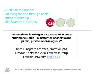 SERNOC workshop:  Learning for and through social entrepreneurship Mid Sweden University