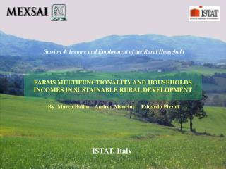 FARMS MULTIFUNCTIONALITY AND HOUSEHOLDS INCOMES IN SUSTAINABLE RURAL DEVELOPMENT