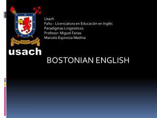 Usach Fahu - Licenciatura en Educación en Inglés Paradigmas Lingüisticos Profesor: Miguel Farias