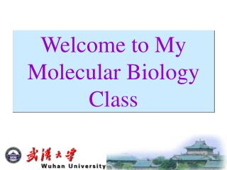 Welcome to My Molecular Biology Class