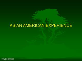 ASIAN AMERICAN EXPERIENCE