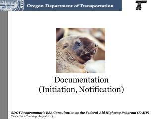 Documentation  (Initiation, Notification)