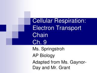 Cellular Respiration:  Electron Transport Chain Ch. 9