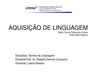 AQUISIÇÃO DE LINGUAGEM Maria Fausta Pereira de Castro Rosa Attié Figueira