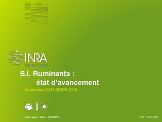 S.I. Ruminants : état d'avancement