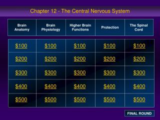 Chapter 12 - The Central Nervous System