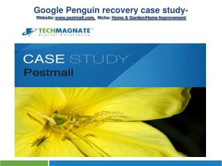 Google Penguin Recovery Case Study