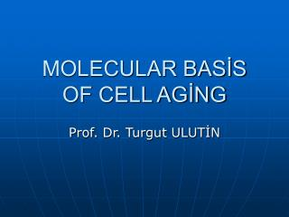 MOLECULAR BASİS OF CELL AGİNG