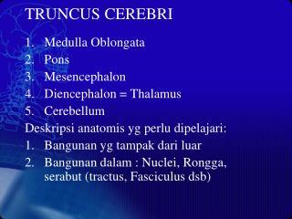 TRUNCUS CEREBRI