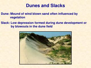 Dunes and Slacks presentation by Jenny McDaniel