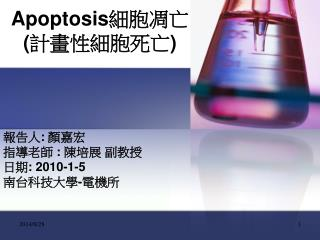 Apoptosis 細胞凋亡 ( 計畫性細胞死亡 )