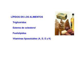 LÍPIDOS EN LOS ALIMENTOS    Triglicéridos    Esteres de colesterol    Fosfolípidos