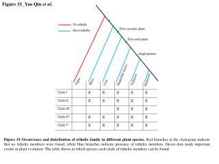 Figure  S 1_Yao Qin  et al .
