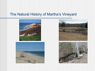 The Natural History of Martha's Vineyard