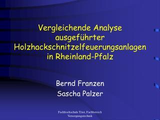 Vergleichende Analyse ausgeführter Holzhackschnitzelfeuerungsanlagen in Rheinland-Pfalz