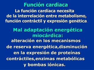 Función cardiaca