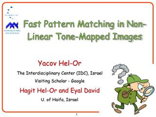 Fast Pattern Matching in Non-Linear Tone-Mapped Images