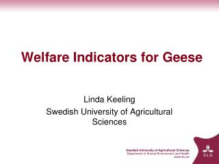 Welfare Indicators for Geese