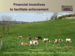 Financial incentives  to facilitate enforcement