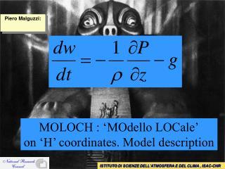 MOLOCH : 'MOdello LOCale' on 'H' coordinates. Model description