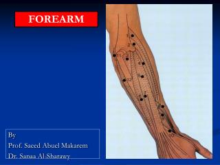 By  Prof. Saeed Abuel Makarem Dr.  Sanaa  Al- Sharawy