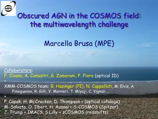 Obscured AGN in the COSMOS field:  the multiwavelength challenge