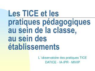 Les TICE et les pratiques pédagogiques  au sein de la classe, au sein des établissements