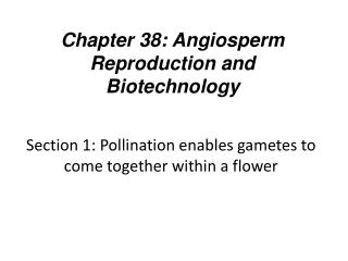 Section 1: Pollination  enables gametes to come together within a flower