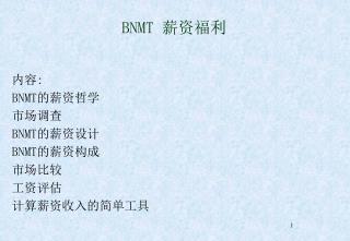 BNMT  薪资福利