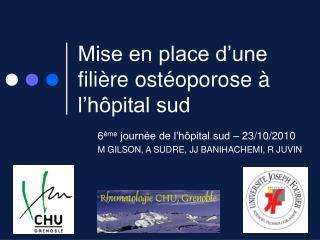 Mise en place d�une fili�re ost�oporose � l�h�pital sud