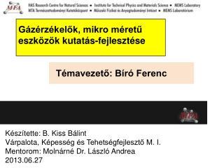Témavezető: Bíró Ferenc