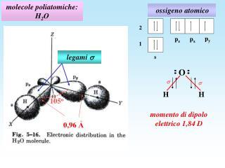 molecole poliatomiche: H 2 O