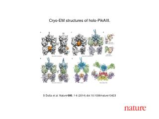 S Dutta  et al.  Nature  000 ,  1 - 6  (2014) doi:10.1038/nature 13423