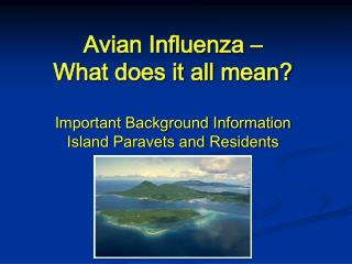 Avian Influenza – What does it all mean?