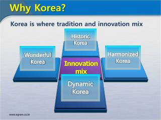 Innovation mix