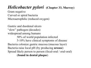 Helicobacter pylori   (Chapter 33, Murray) Gram negative Curved or spiral bacteria