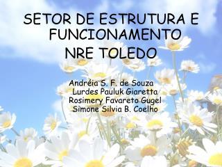 SETOR DE ESTRUTURA E FUNCIONAMENTO NRE TOLEDO