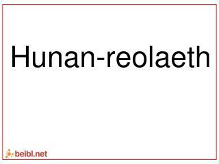 Hunan-reolaeth