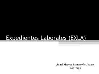 Expedientes Laborales (EXLA)
