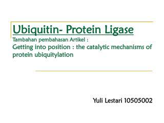 Yuli Lestari 10505002