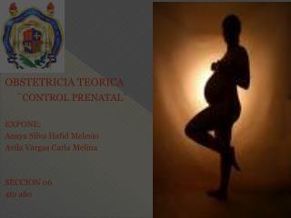 OBSTETRICIA TEORICA ¨ CONTROL PRENATAL¨ EXPONE: Anaya Silva  Hafid Melesio