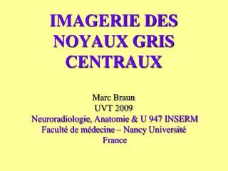 NOYAUX GRIS