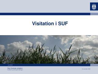 Visitation i SUF