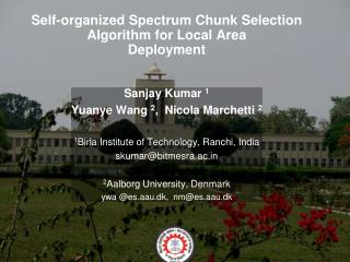 Self-organized Spectrum Chunk Selection  Algorithm for Local Area Deployment