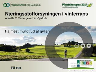 Næringsstofforsyningen i vinterraps Annette V. Vestergaard: avv@vfl.dk