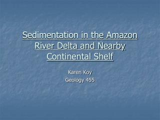 Sedimentation in the Amazon River Delta and Nearby Continental Shelf