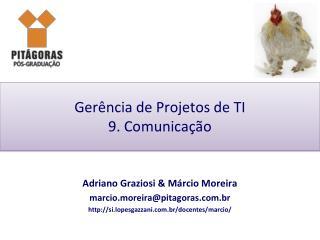 Ger�ncia de Projetos de TI 9. Comunica��o