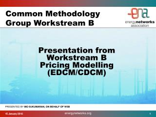 Presentation from  Workstream B  Pricing Modelling  (EDCM/CDCM)