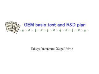 GEM basic test and R&D plan