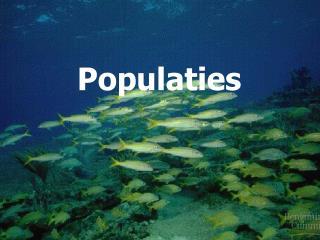 Populaties